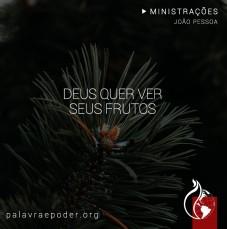 Imagem da ministração - Deus quer ver seus frutos